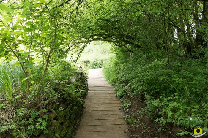 wildgarten-furth.de Wildgarten Furth im Wald Unterwasser Beobachtungs-Station